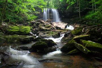 Forest Waterfall Wallpaper Waterfall Pictures Waterfall Screensavers