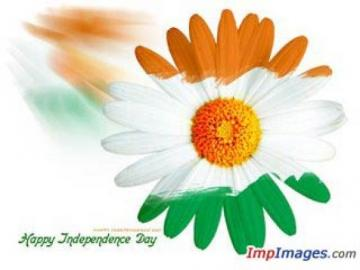 Indian Flag Wallpaper Happy Indian Independence Day Flower