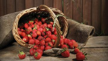 Strawberry Fruits Wallpapers HD Wallpapers