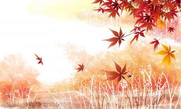 Description Background wallpaper maple leavesjpg