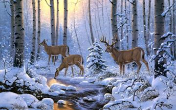 Download wallpaper derk hansen deer Winter forest desktop