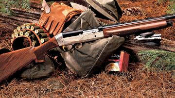 Shotguns for Hunting in Jungle Wallpaper Download