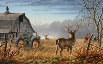 Animals Tractors Wallpaper 1920x1200 Animals Tractors Artwork