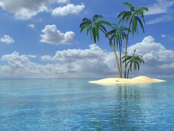 palm trees wallpapers palm trees desktop wallpapers palm trees desktop
