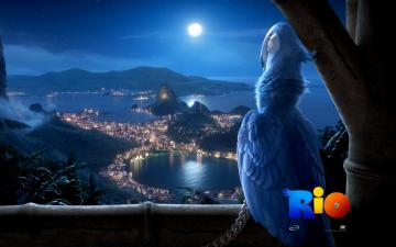 Rio Movie Wallpapers HD Wallpapers