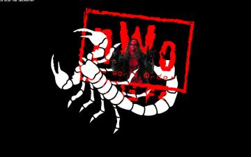 Wcw Sting Wallpaper Sting wallpapers by mr enjoy