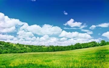 Beautiful Nature Wallpapers HD Wallpapers