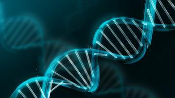Gene Wallpaper