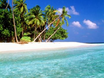 World Visits Tropical Island Beach Wallpaper Review