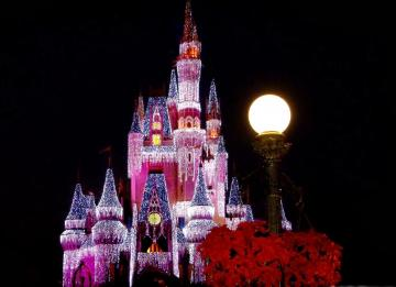 Disney Castle HD Wallpapers Download   Best Photos Wallpapers
