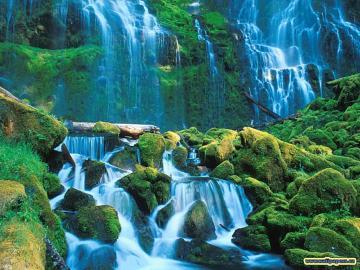 Zoo Park Waterfalls Wallpapers Waterfall Wallpaper Desktop