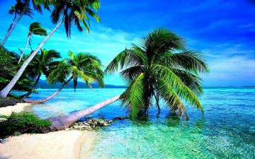tropical beach widescreen wallpapers in hd download beach images