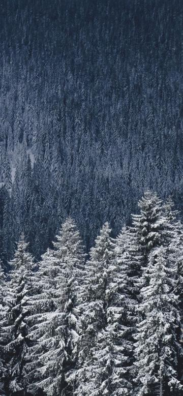 [50] Winter Aesthetic   Android iPhone Desktop HD Backgrounds