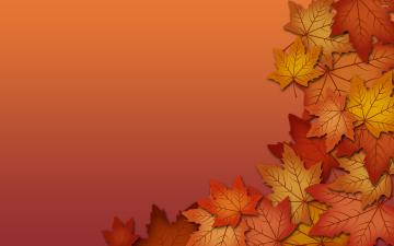 Autumn leaves wallpaper   1009269