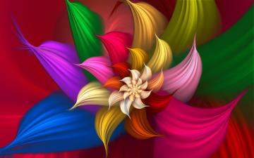 Colorful Abstract Flower wide Wallpaper   New HD Wallpapers