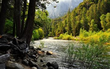Yosemite National Park Desktop Wallpapers FREE on Latorocom