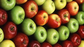 Colorful Apple Fruit 1600 x 900 Download Close