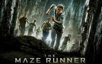2014 The Maze Runner Movie Exclusive HD Wallpapers 7242