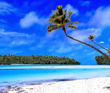 Caribbean Beach Wallpaper Best Wallpaper Gallery