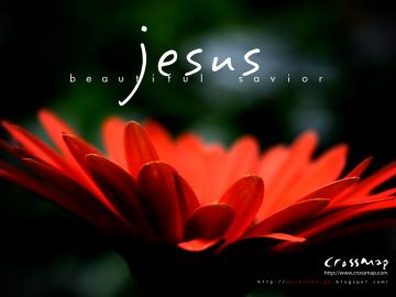 Bible Verse Greetings Card Wallpapers Christian Inspirational