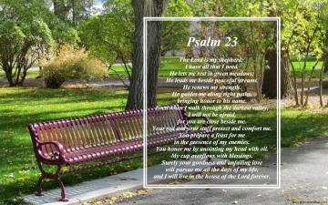 wallpaper sparkle psalm psalms