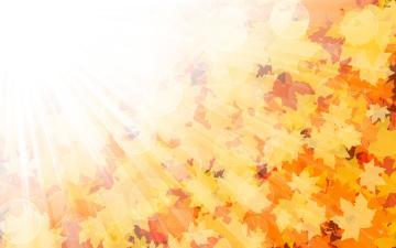 Nature   Seasons   Autumn the sunshine in autumn 046196 jpg