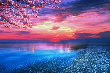 Amazing Red Sunset Ocean Wallpaper Wallpaper WallpaperLepi