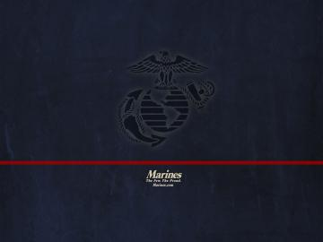 this is the hot us marine corps hawk wallpaper background