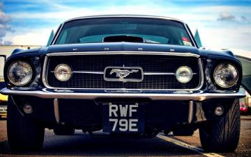 Black Mustang wallpapers Black Mustang stock photos