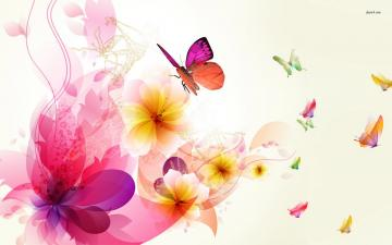 1680x1050   312 78 KB   jpg 89 Colorful Butterfly Wallpapers