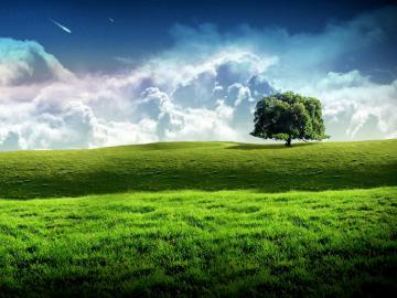 Nice Wallpapers High resolution   Nature Wallpapers