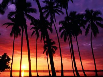 Nature Sunset Spectacular Puerto Rico desktop wallpaper nr 35509