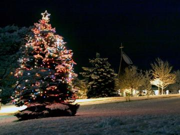 Christmas Tree Desktop Wallpapers   Page 1