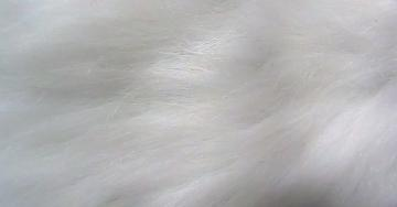 White Fur Texture Background by SweetSoulSister