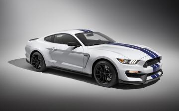 2016 ford mustang shelby gt350 wallpaper photos pictures