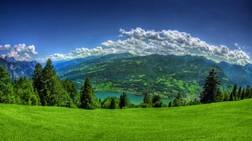 Lush Green Grass Mountain Full HD Nature Background Wallpapers