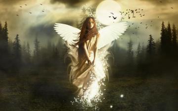 Beautiful Angel Screensaver