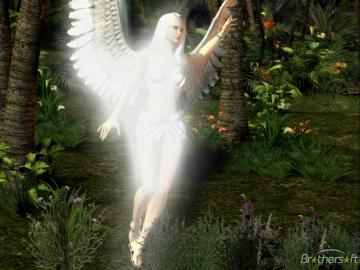 Download Angel Morning Theme Angel Morning Theme 1 Download