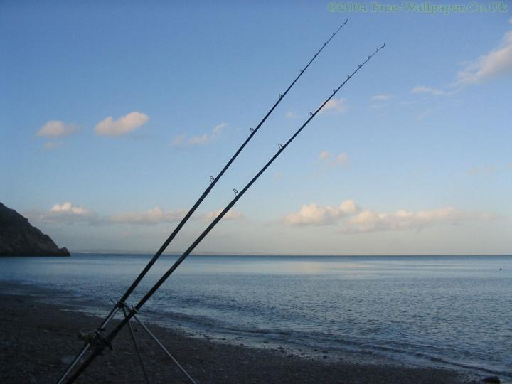 1024x319px Saltwater Fishing Wallpaper