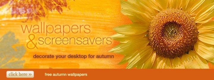 750x283px american greetings free wallpaper downloads wallpapersafari you m4hsunfo