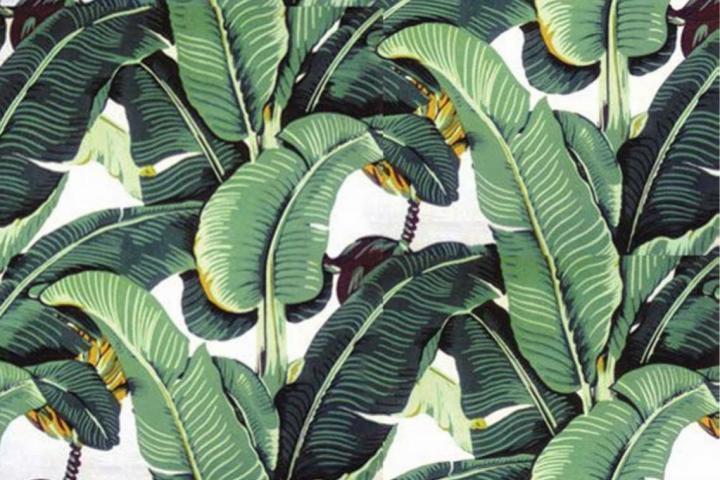 600x833px Tropical Palm Leaf Wallpaper - WallpaperSafari