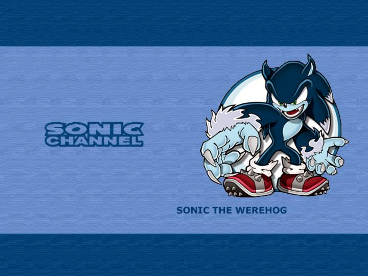 1024x726px Sonic The Werehog Wallpaper