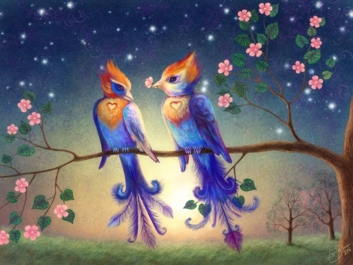 900x580px Wallpapers Of Love Birds