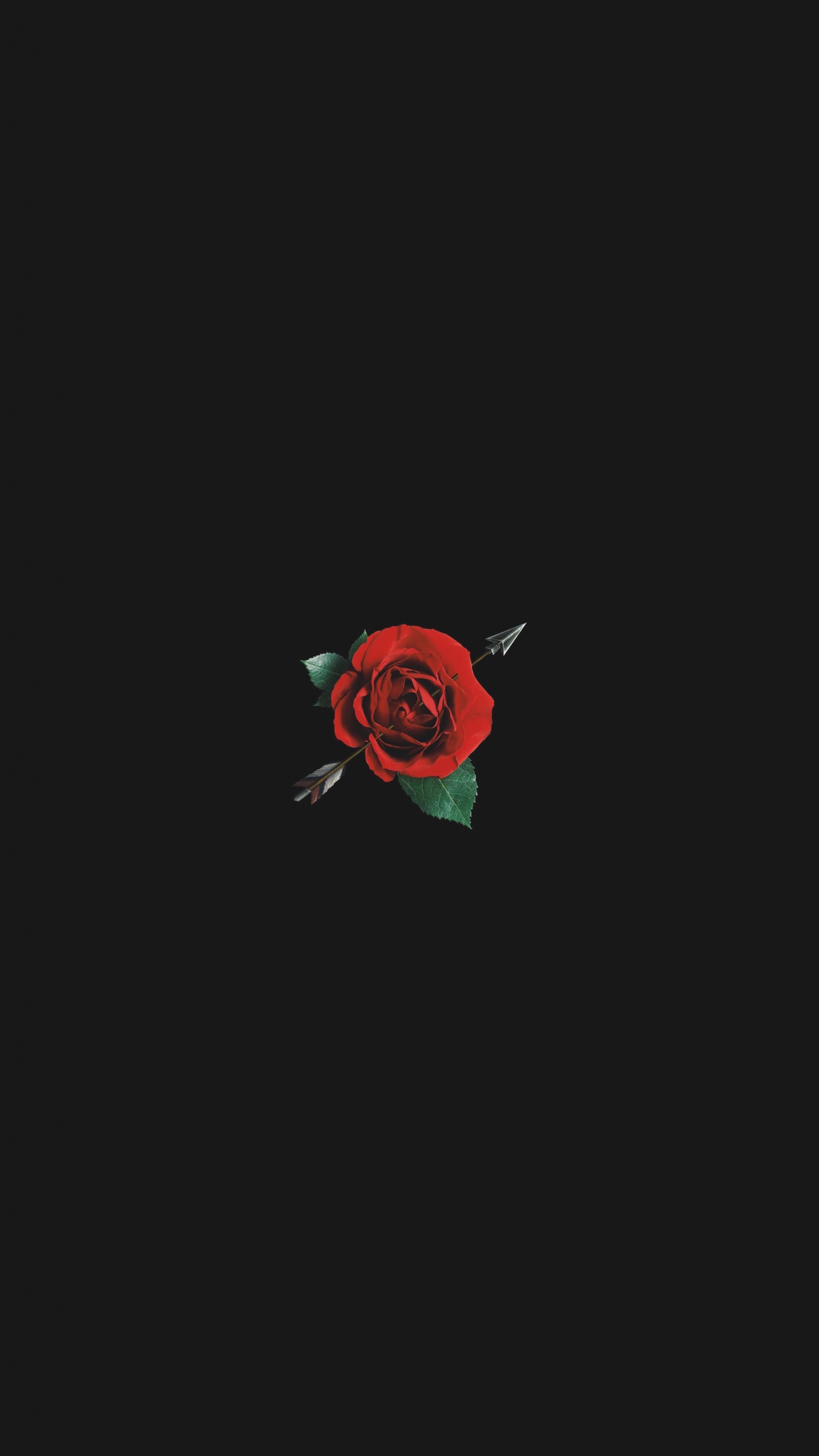 Free Download Aesthetic Red Rose With Black Background 2200x3300 For Your Desktop Mobile Tablet Explore 49 Red Roses Aesthetic Wallpapers Red Roses Aesthetic Wallpapers Red Aesthetic Wallpaper Wallpaper Red Roses