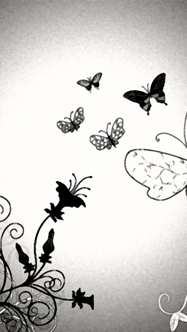 Free Download Black And White Butterfly Wallpaper Hd