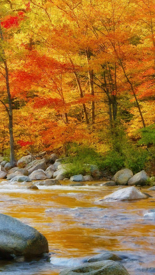 Free download New Hampshire Autumn beautiful The Cozy ...