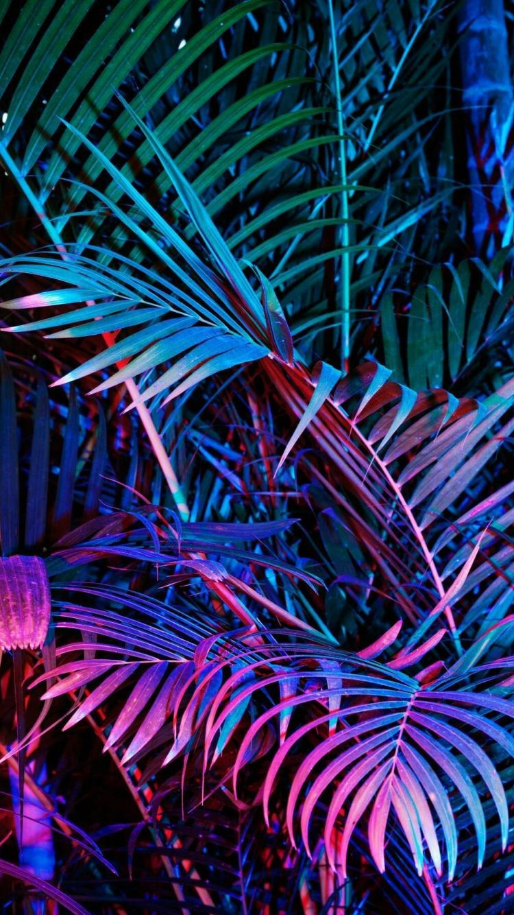 Free Download Neon Aesthetic Phone Wallpapers Top Neon