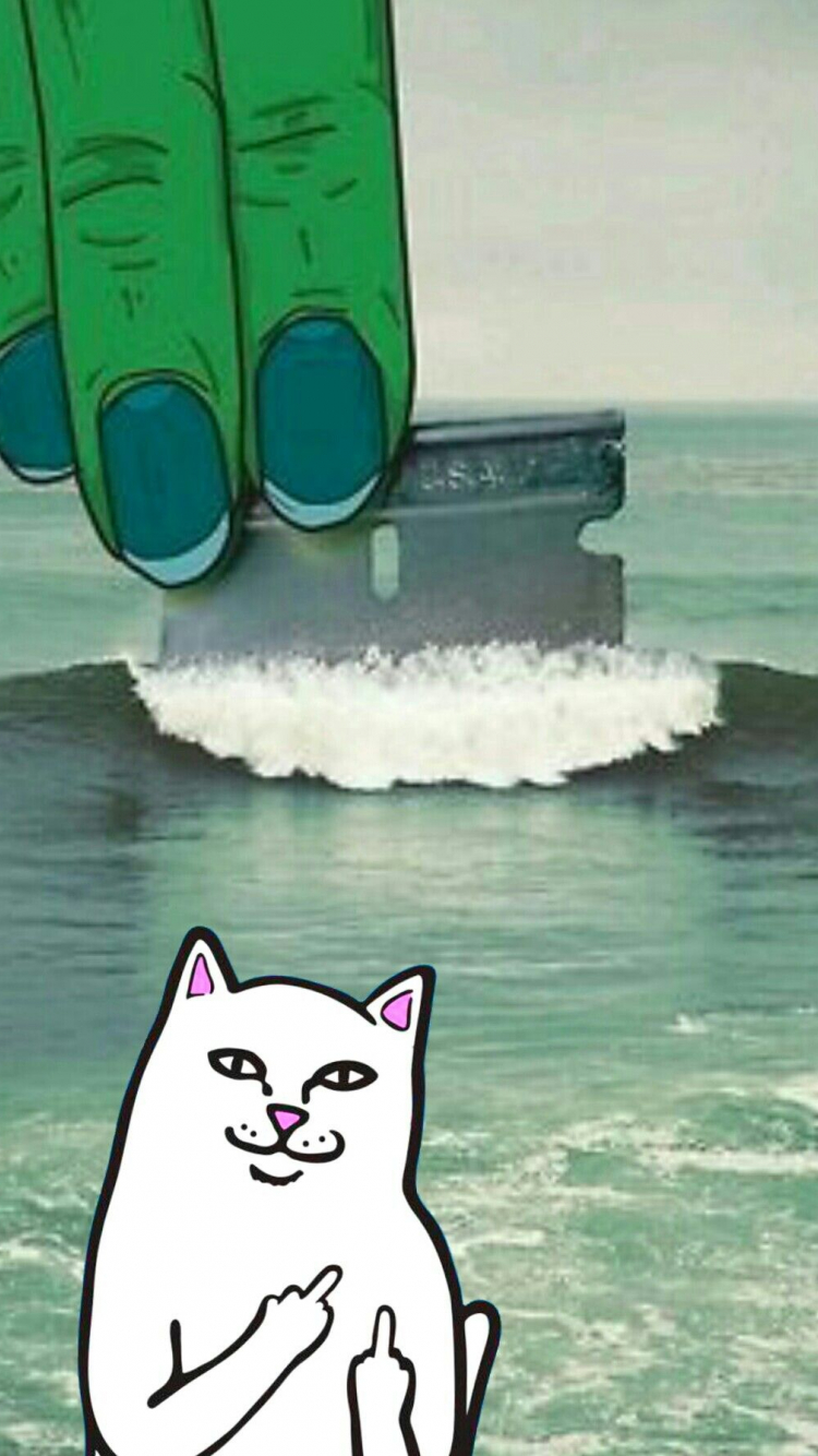 Free Download Ripndip Iphone Wallpaper Ripndip Middle Finger Cat Wallpaper 1193x1792 For Your Desktop Mobile Tablet Explore 47 Wallpaper Iphone Supreme Fingers Wallpaper Iphone Supreme Fingers Supreme Iphone Wallpapers