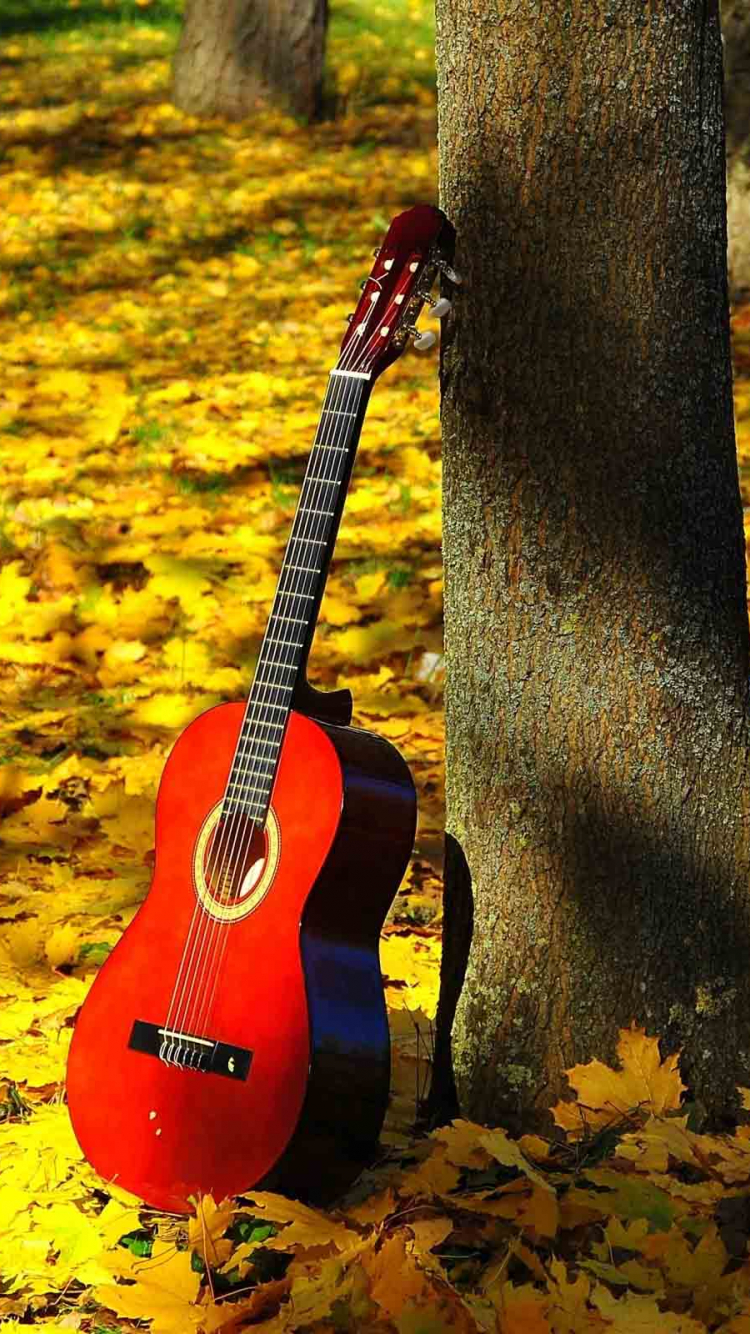 Free Download Latest Guitar Hd New Wallpapers Download 2560x1600 For Your Desktop Mobile Tablet Explore 50 New Wallpapers Free Download Free Wallpaper Backgrounds Free Wallpapers For Desktop Download Free Wallpapers