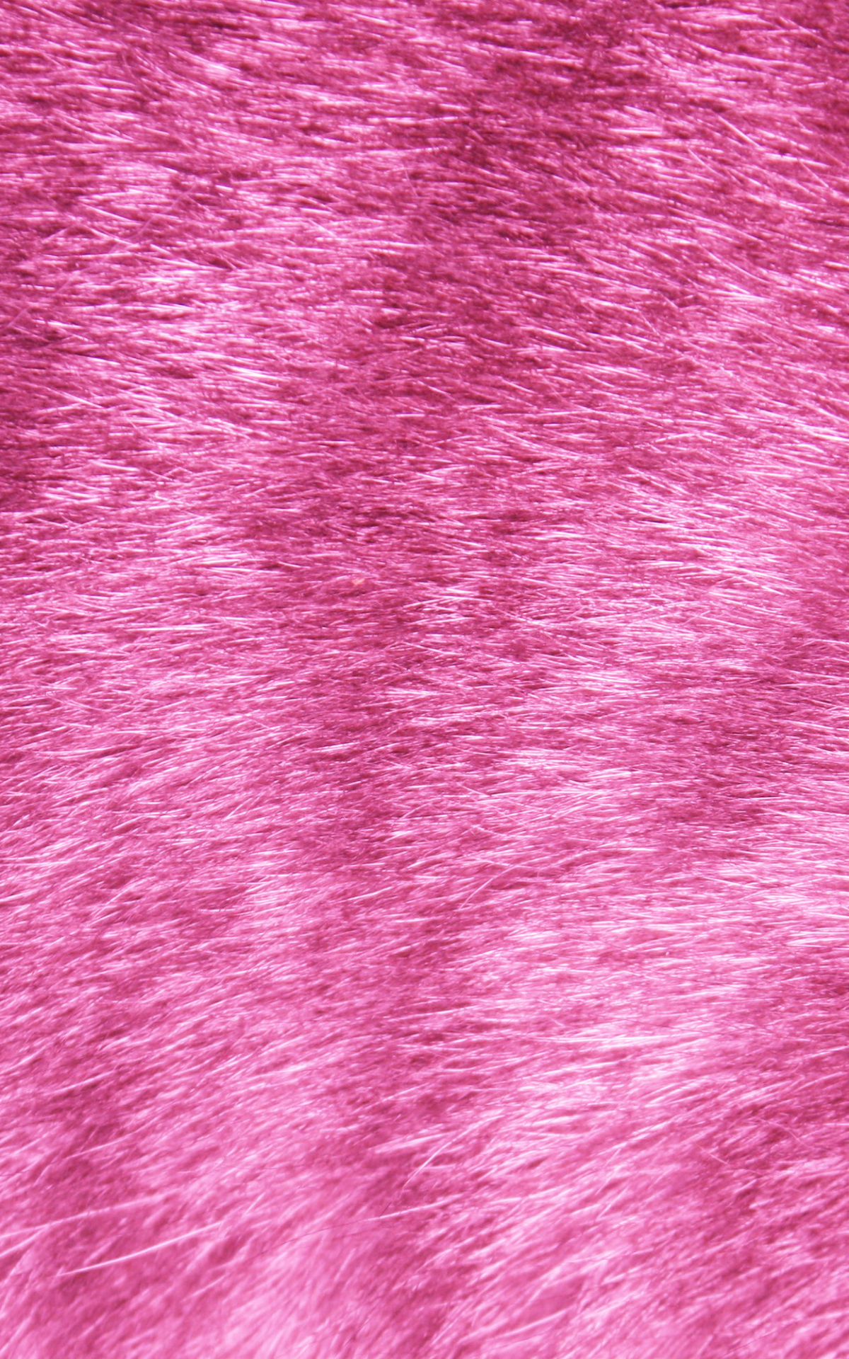 Free Download Pink Tabby Fur Texture High Resolution Photo